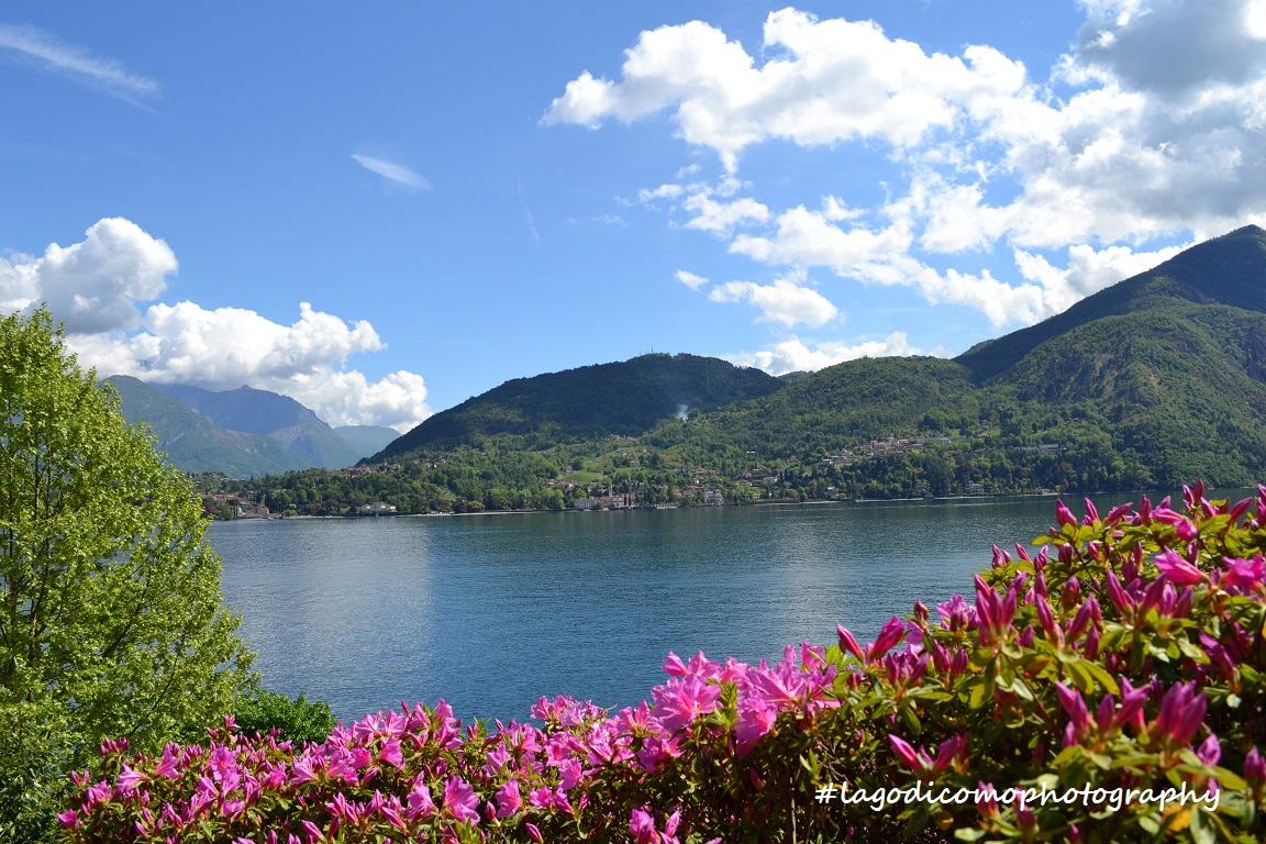 Lago di Como: Villa Carlotta e il giardino botanico